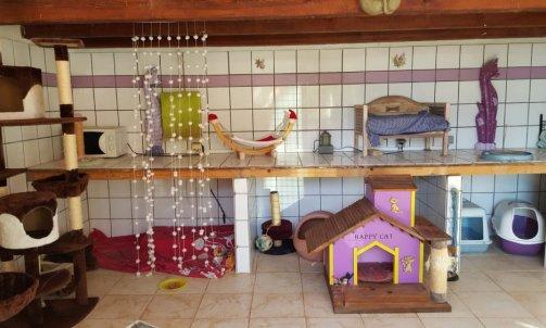 Maternité et son jardin