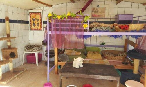 Garderie pour chat La Crau
