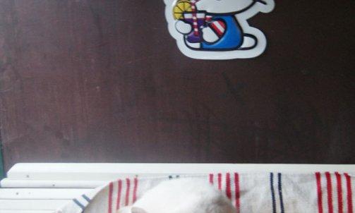 Pension pour chat courte durée La Crau
